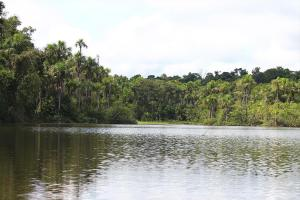 Amazon under threat: Tambopata National Reserve protects a corner of South America's rainforests