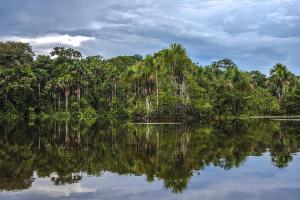 Tambopata - Protecting eight different types of Amazon forest ecosystem